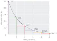 half life curve